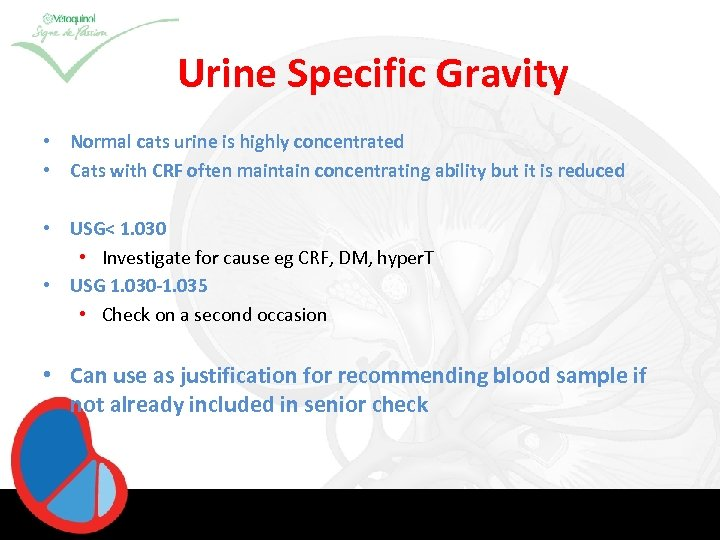 Urine Specific Gravity • Normal cats urine is highly concentrated • Cats with CRF