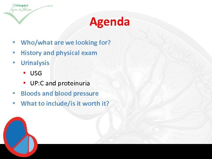 Agenda • Who/what are we looking for? • History and physical exam • Urinalysis
