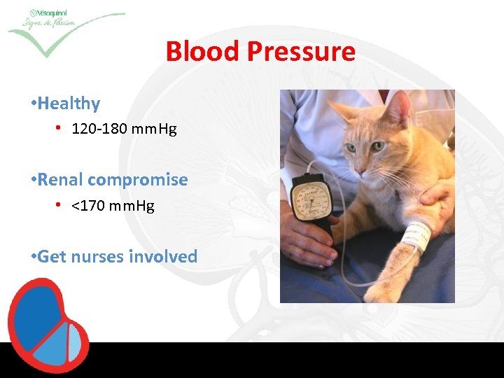 Blood Pressure • Healthy • 120 -180 mm. Hg • Renal compromise • <170