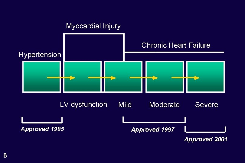 Myocardial Injury Chronic Heart Failure Hypertension LV dysfunction Approved 1995 Mild Moderate Severe Approved