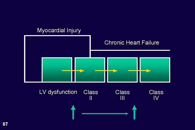 Myocardial Injury Chronic Heart Failure LV dysfunction 87 Class III Class IV
