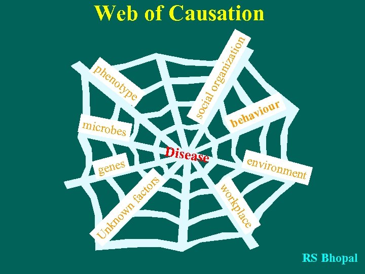 zat ion Web of Causation en o org ani ph typ soc ial e