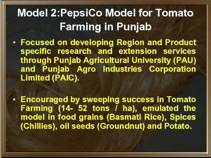 Model 2: Pepsi. Co Model for Tomato Farming in Punjab • Focused on developing