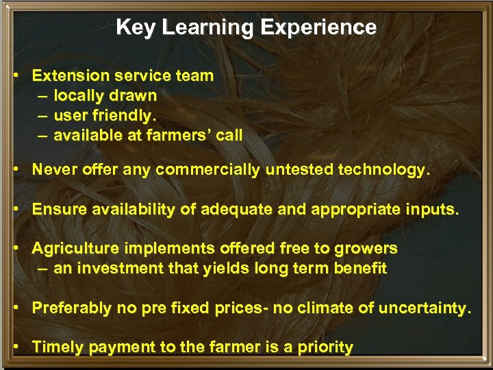 Key Learning Experience • Extension service team – locally drawn – user friendly. –