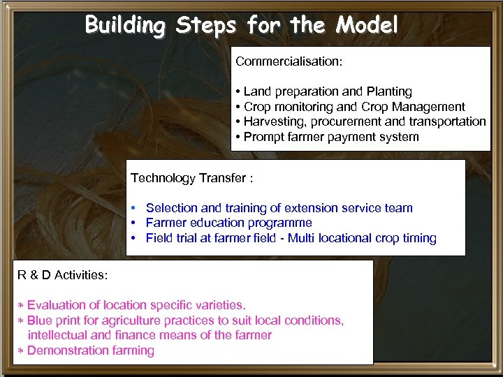 Building Steps for the Model Commercialisation: • Land preparation and Planting • Crop monitoring