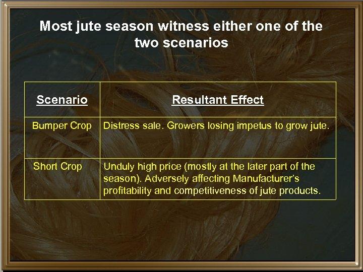Most jute season witness either one of the two scenarios Scenario Resultant Effect Bumper