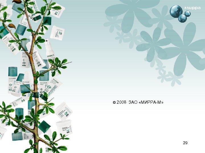 © 2008 ЗАО «МИРРА-М» 29