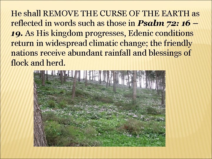 He shall REMOVE THE CURSE OF THE EARTH as reflected in words such as