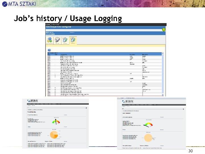Job's history / Usage Logging 30