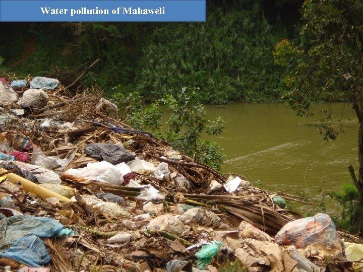 Water pollution of Mahaweli