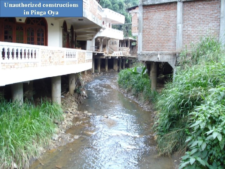 Unauthorized constructions in Pinga Oya