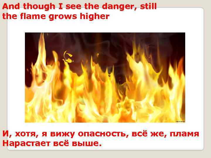 And though I see the danger, still the flame grows higher И, хотя, я