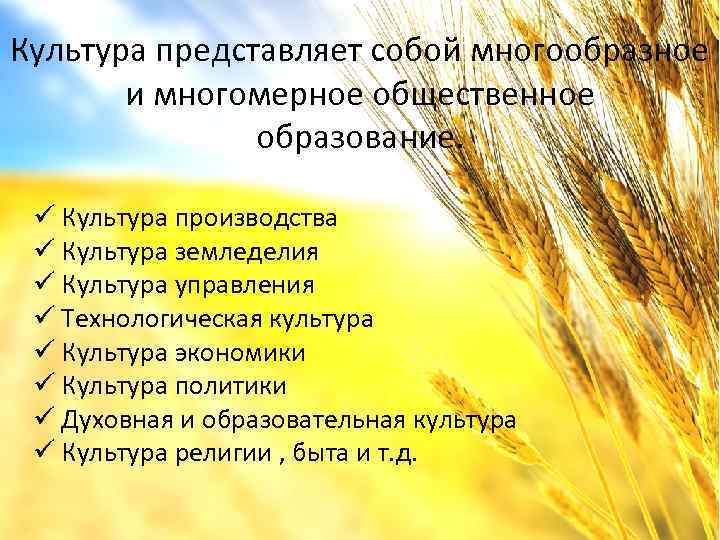 Культура представляет собой многообразное и многомерное общественное образование. ü Культура производства ü Культура земледелия