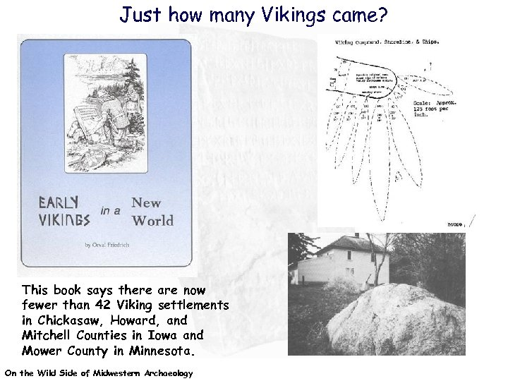 Just how many Vikings came? This book says there are now fewer than 42
