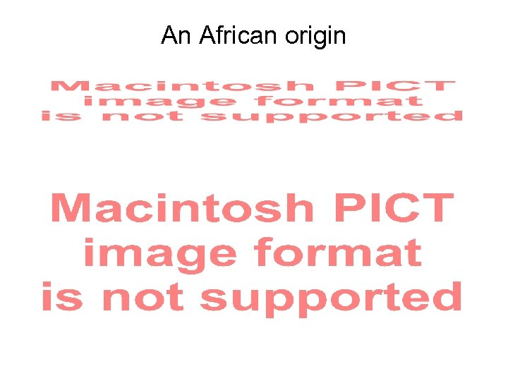 An African origin
