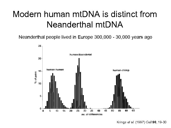 Modern human mt. DNA is distinct from Neanderthal mt. DNA Neanderthal people lived in