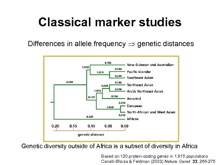 Classical marker studies Differences in allele frequency genetic distances Genetic diversity outside of Africa
