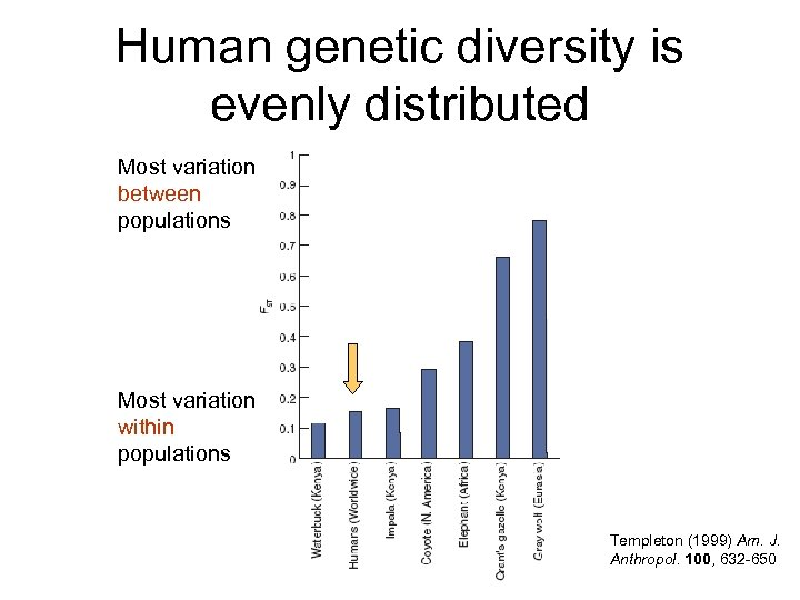 Human genetic diversity is evenly distributed Most variation between populations Most variation within populations