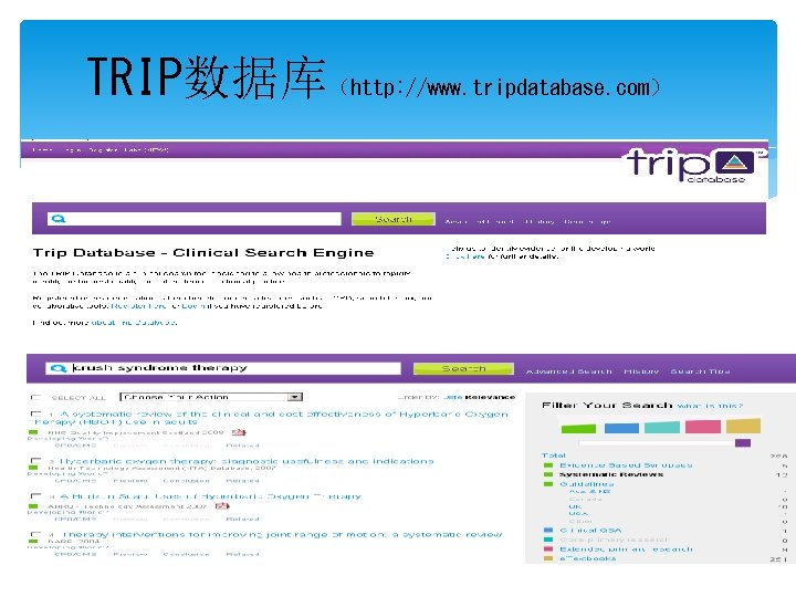 TRIP数据库(http: //www. tripdatabase. com)