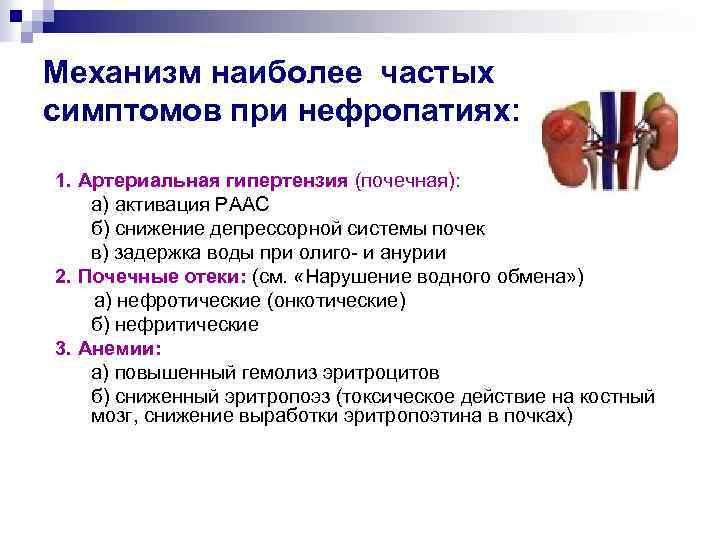 Почки Диета Нефропатия. Диета при нефропатии почек: поддержка ослабленных органов