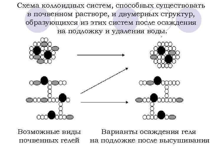 Схема коллоидных систем, способных существовать в почвенном растворе, и двумерных структур, образующихся из этих