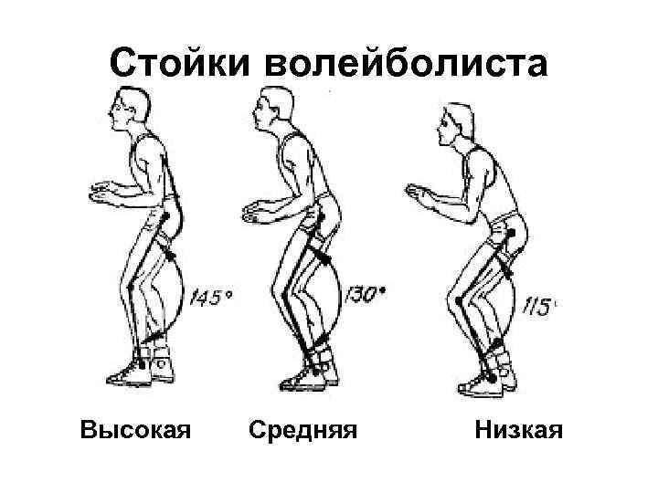 Стойки волейболиста Высокая Средняя Низкая