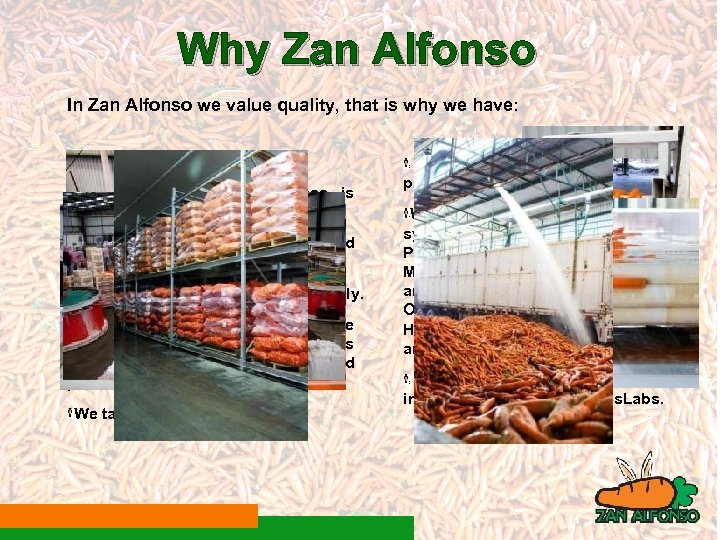 Why Zan Alfonso In Zan Alfonso we value quality, that is why we have: