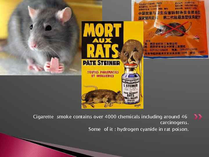 Cigarette smoke contains over 4000 chemicals including around 46 carcinogens. Some of it :