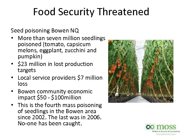 Food Security Threatened Seed poisoning Bowen NQ • More than seven million seedlings poisoned