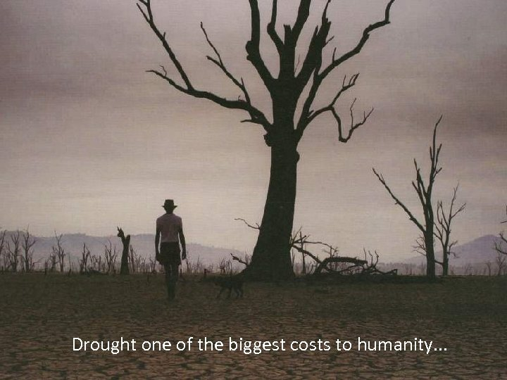 Drought one of the biggest costs to humanity. . .