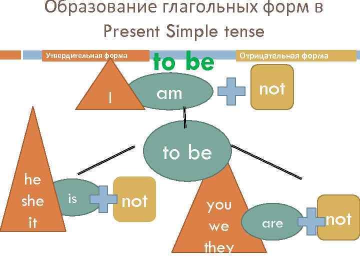 Образование глагольных форм в Present Simple tense Утвердительная форма to be am I Отрицательная