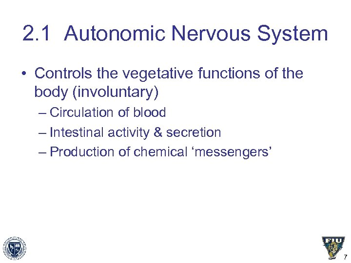 2. 1 Autonomic Nervous System • Controls the vegetative functions of the body (involuntary)