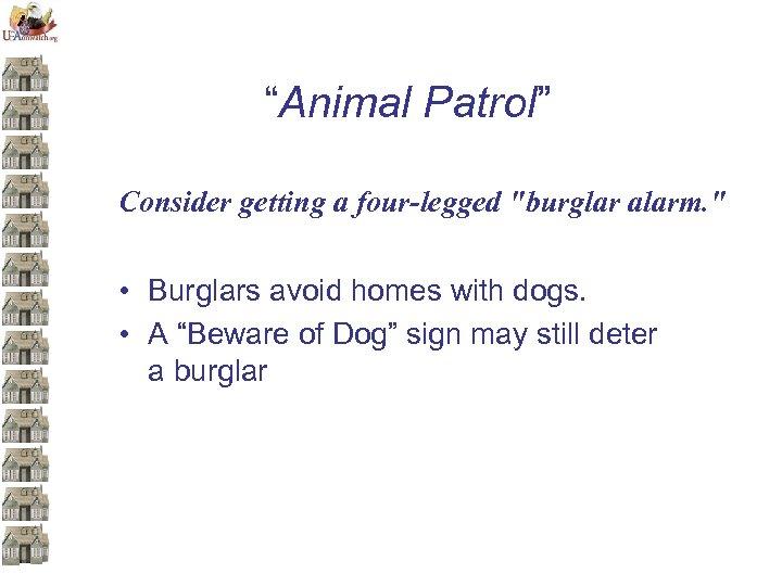 """""""Animal Patrol"""" Consider getting a four-legged"""