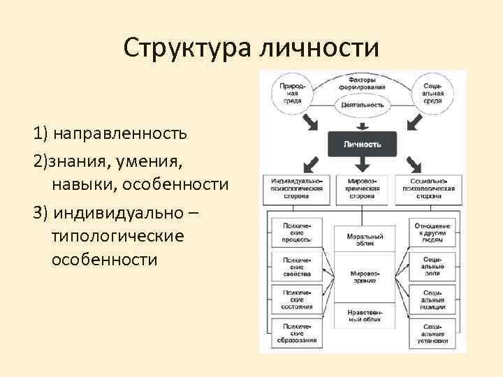 Структура личности 1) направленность 2)знания, умения, навыки, особенности 3) индивидуально – типологические особенности