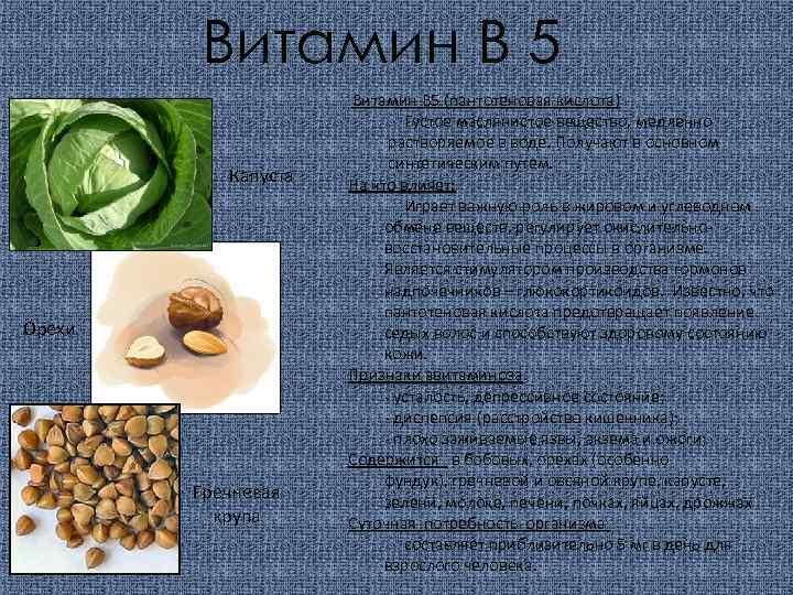 Витамин В 5 Капуста Орехи Гречневая крупа Витамин В 5 (пантотеновая кислота) Густое маслянистое