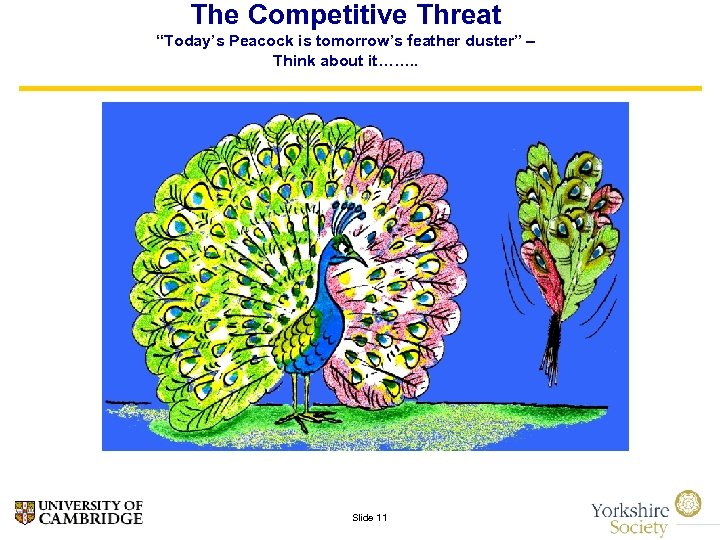 """The Competitive Threat """"Today's Peacock is tomorrow's feather duster"""" – Think about it……. ."""