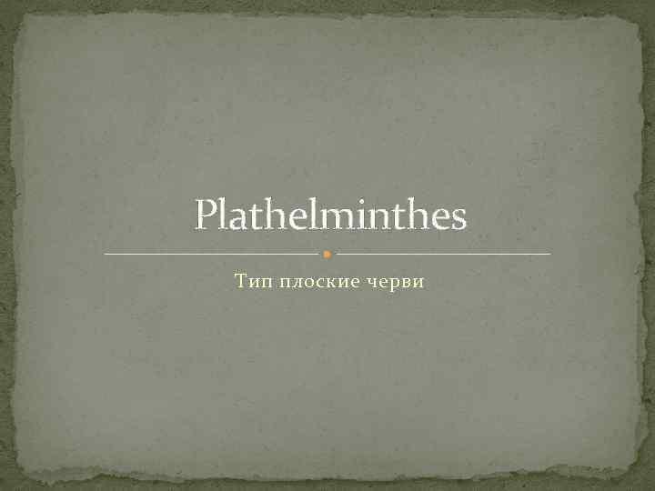 Plathelminthes Тип плоские черви