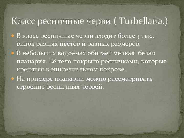 Класс ресничные черви ( Turbellaria. ) В класс ресничные черви входит более 3 тыс.