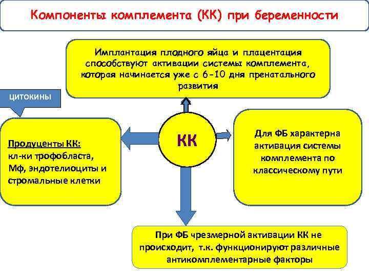 Компоненты комплемента (КК) при беременности Имплантация плодного яйца и плацентация способствуют активации системы комплемента,