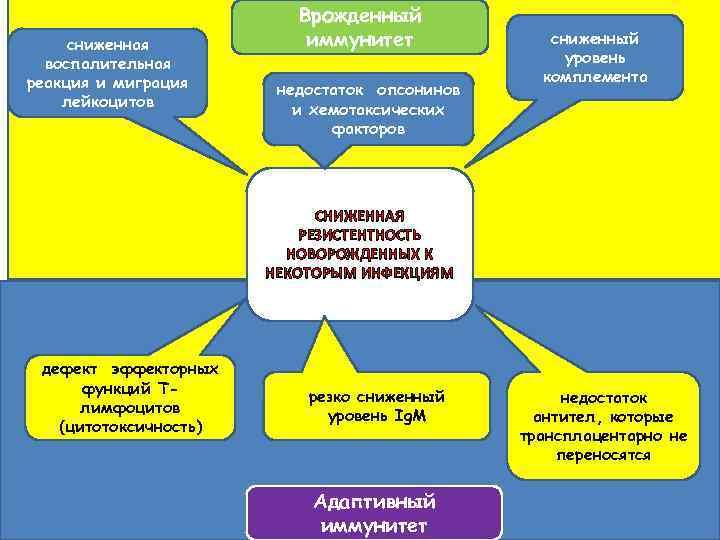 сниженная воспалительная реакция и миграция лейкоцитов Врожденный иммунитет недостаток опсонинов и хемотаксических факторов сниженный