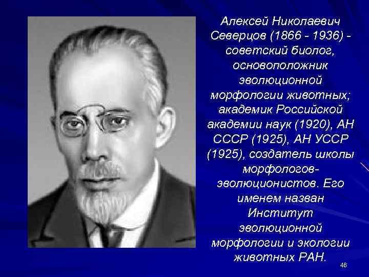 Алексей Николаевич Северцов (1866 - 1936) советский биолог, основоположник эволюционной морфологии животных; академик Российской
