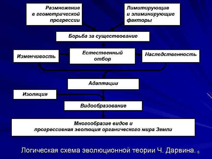 Логическая схема эволюционной теории Ч. Дарвина. 8
