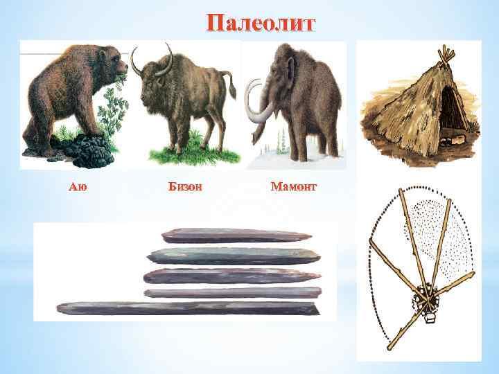 Палеолит Аю Бизон Мамонт