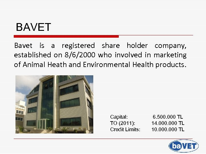 BAVET Bavet is a registered share holder company, established on 8/6/2000 who involved in