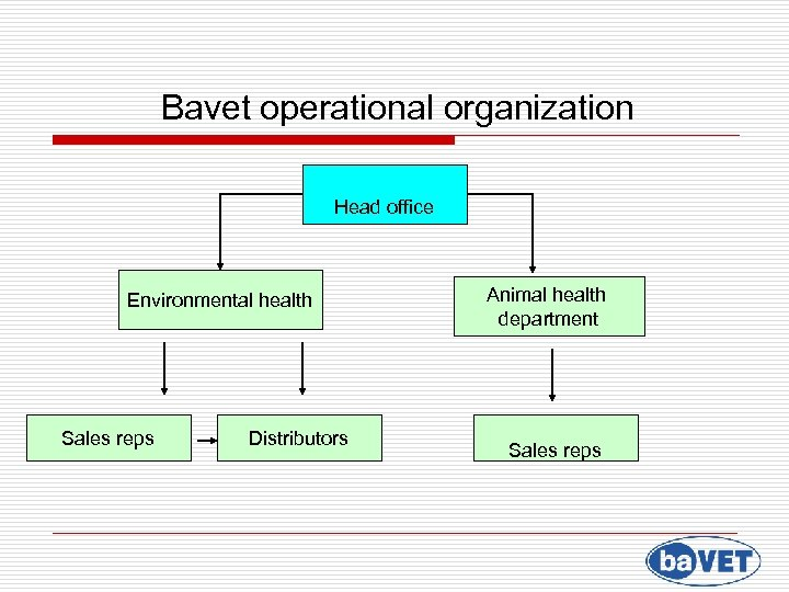 Bavet operational organization Head office Environmental health Animal health department Sales reps Distributors Sales