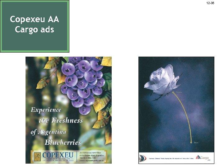 12 -35 Copexeu AA Cargo ads