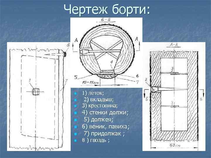 Чертеж борти: n n n n 1) леток; 2) вкладыш; 3) крестовина; 4) стенки