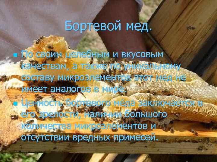 Бортевой мед. n n По своим целебным и вкусовым качествам, а также по уникальному
