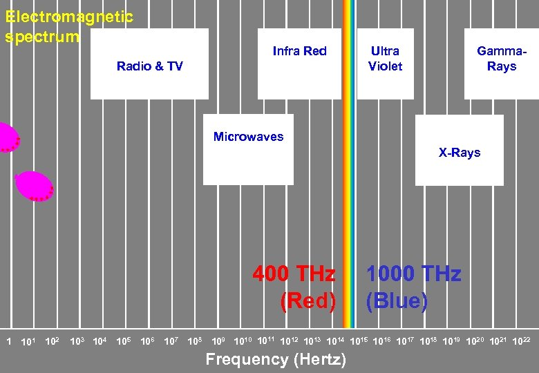 Electromagnetic spectrum Infra Red Radio & TV Ultra Violet Gamma. Rays Microwaves X-Rays 400