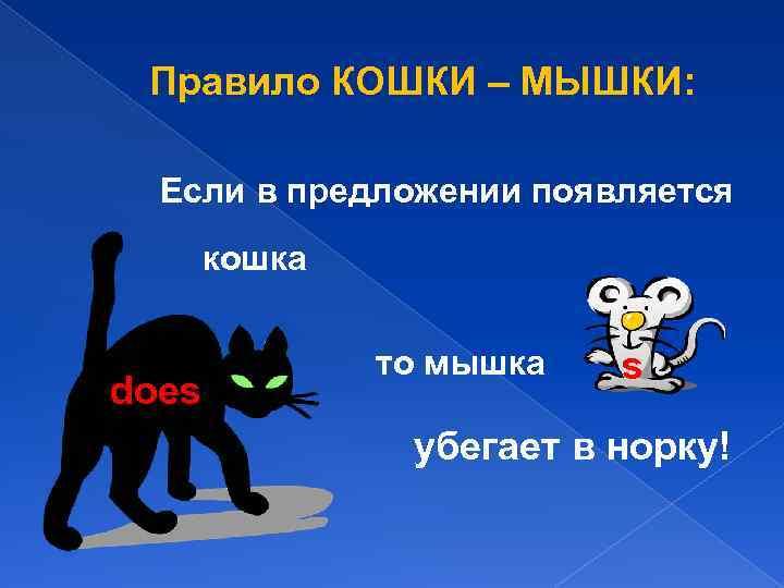 Правило КОШКИ – МЫШКИ: Если в предложении появляется кошка does то мышка s убегает